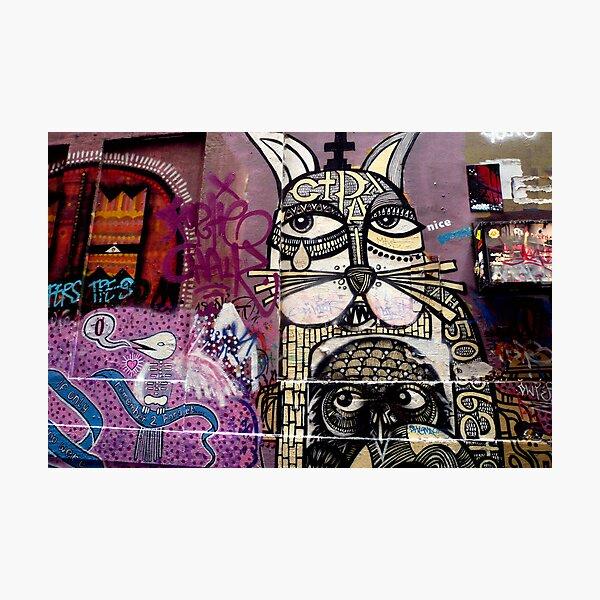 Cat and Bird Graffiti, Melbourne CBD Photographic Print
