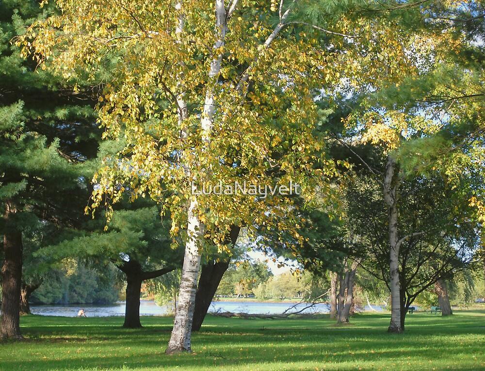 Golden autumn  by LudaNayvelt