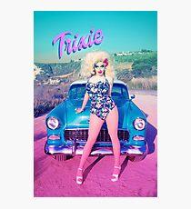 Trixie 2 Photographic Print