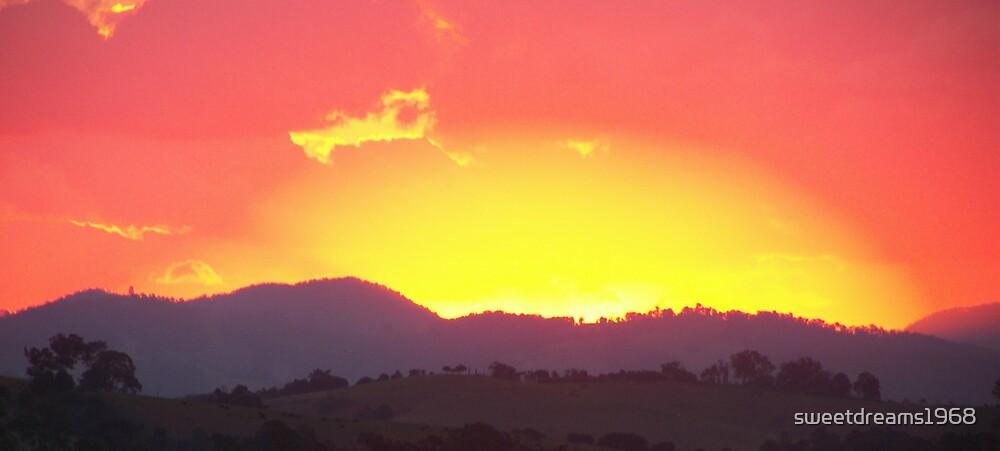 Fire In The Sky by Carol Field
