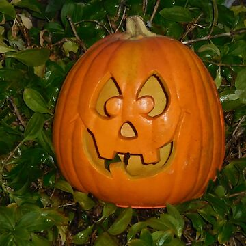 Orange Halloween Pumpkin by Jonice