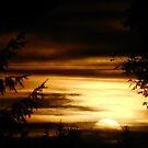 Gorgeous Sunset by Jonice