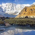 Himalaya Epic by Harry Oldmeadow