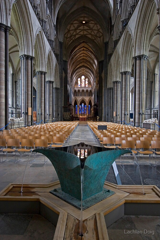 Salisbury Cathedral by Lachlan Doig
