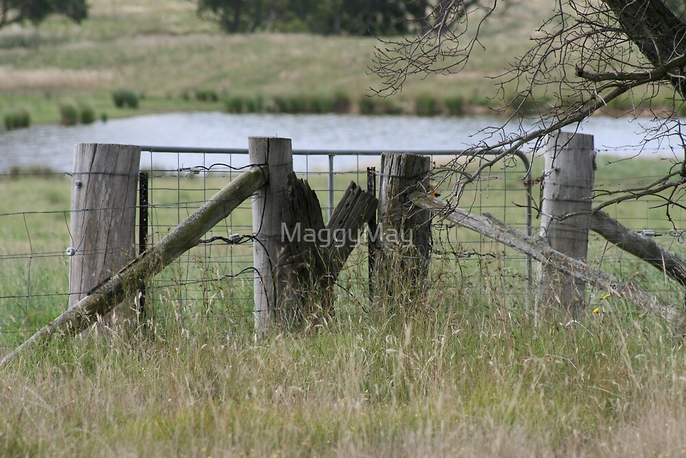 Dam Gate by MaggyMay