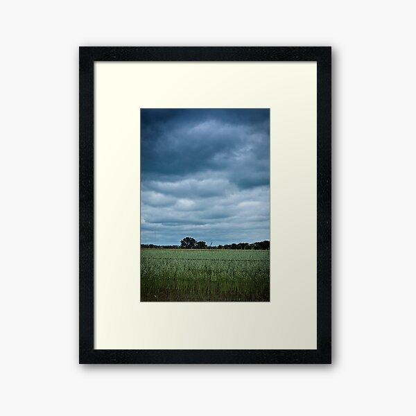 Wheatbelt Framed Art Print