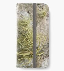 Lichen on tomb in Shalwy Valley, Kilcar, Donegal iPhone Wallet/Case/Skin