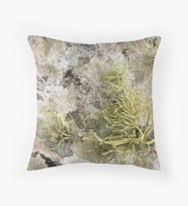 Lichen on tomb in Shalwy Valley, Kilcar, Donegal Throw Pillow