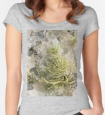 Lichen on tomb in Shalwy Valley, Kilcar, Donegal Women's Fitted Scoop T-Shirt