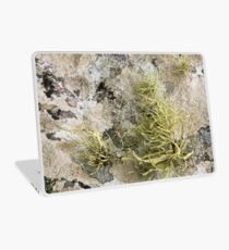Lichen on tomb in Shalwy Valley, Kilcar, Donegal Laptop Skin