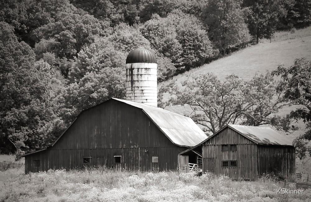 Barn in Evening Light by KSkinner