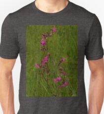 Red Campion in Burntollet Woods T-Shirt