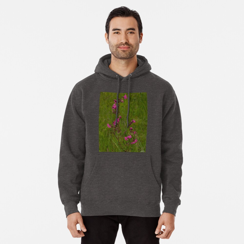 Red Campion in Burntollet Woods Pullover Hoodie