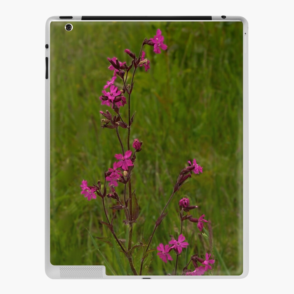 Red Campion in Burntollet Woods iPad Case & Skin