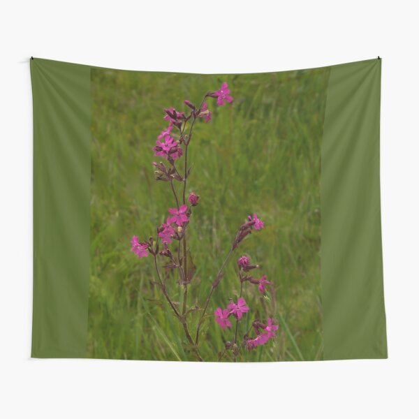 Red Campion in Burntollet Woods Tapestry