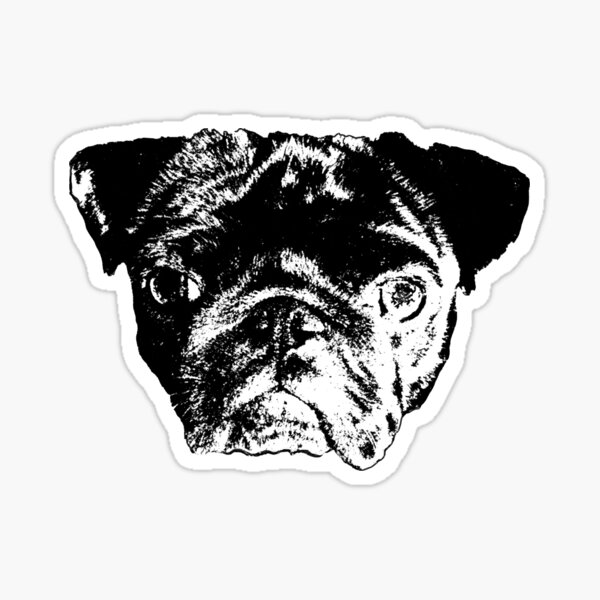 Guapo The Pug Sticker