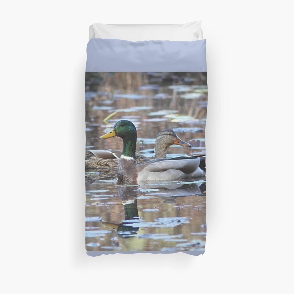 Mallard Duck pair in autumn by Linda Crockett