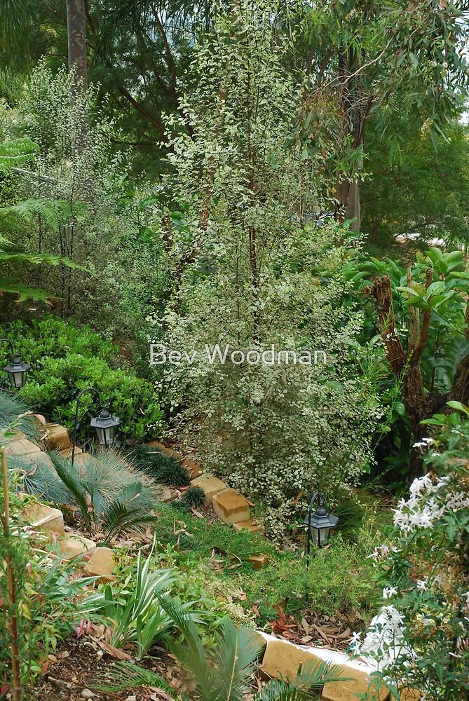 The Garden Below by Bev Woodman