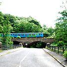 Train over Beggars Bridge by dougie1