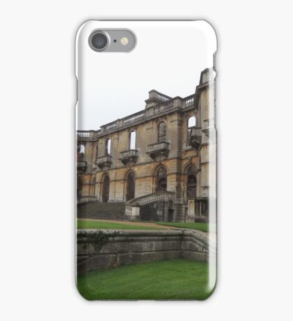 Surviving and Thriving iPhone Case/Skin