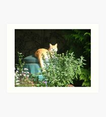 Composted cat Art Print