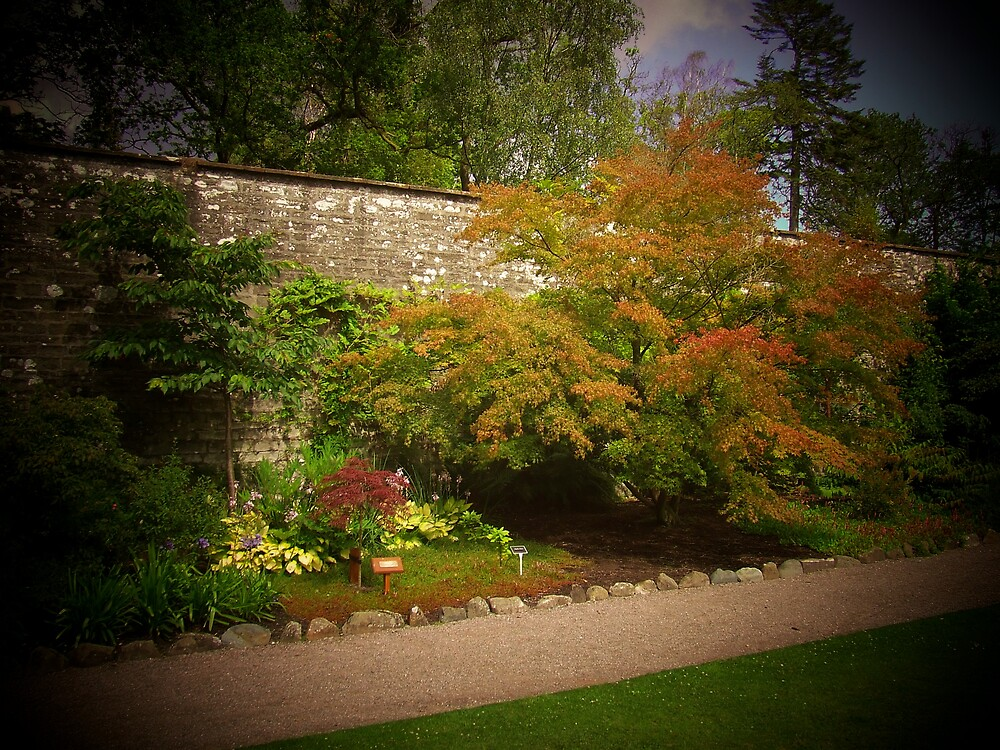 Walled Garden by David Fulton