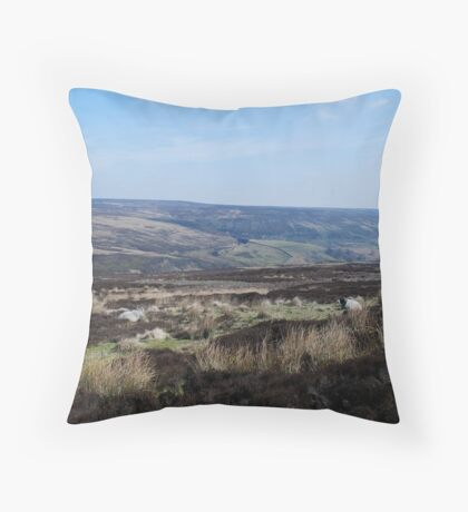 Far Horizons Throw Pillow