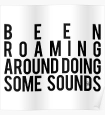 Been Roaming Around Doing Some Sounds Poster