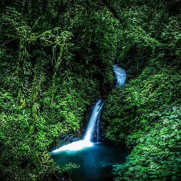 Cascada de la selva de Nicklas81
