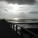 Crystal Beach by Leonine