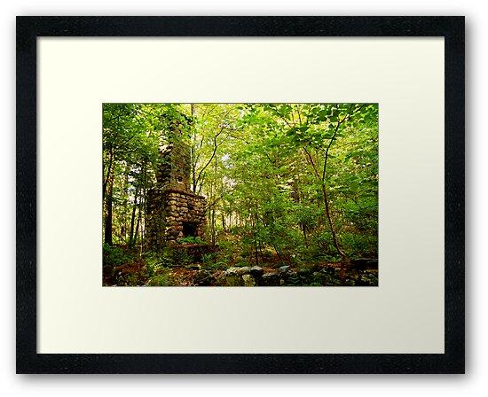 Fireplace in Woods by Jeannette Sheehy