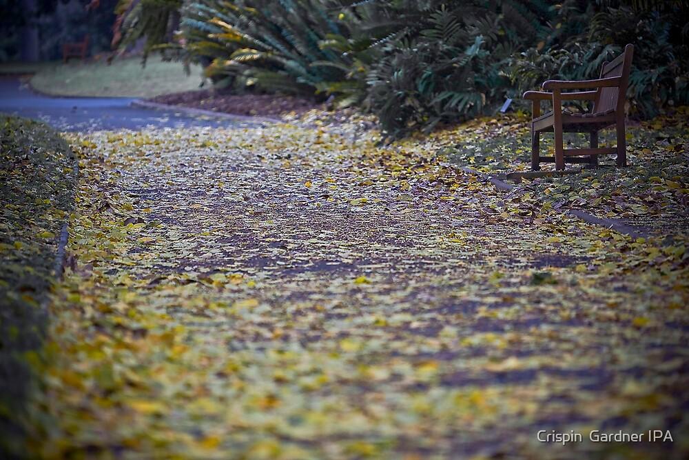 Botanical Bench by Crispin  Gardner IPA