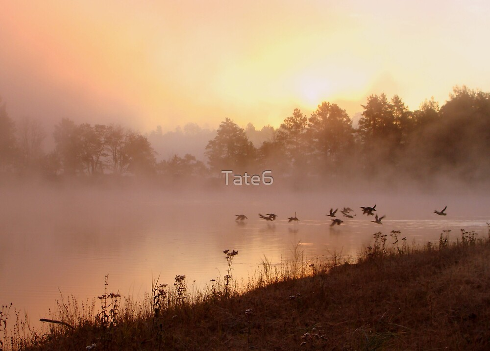 Creature of God by Tate6