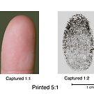 Finger Print Composit by Douglas Gaston IV