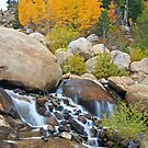 Fall Along the Alluvial Fan by Gary Lengyel