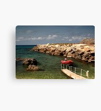 RouGe Canvas Print
