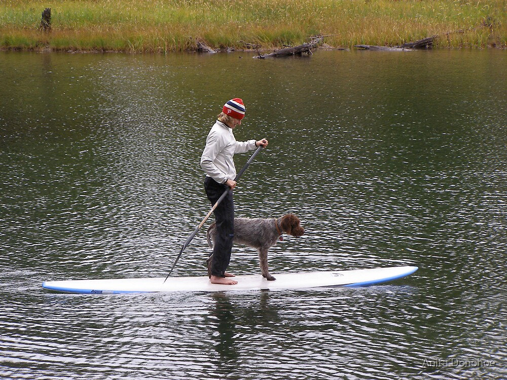 Surfing the Lake by Anita Donohoe