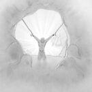 « Allégorie de la caverne, Platon » par ManoonFrance
