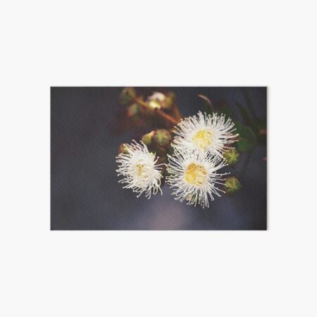 Blossoms and Buds Art Board Print
