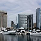 San Diego Downtown by Jan  Wall