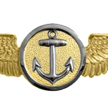 USMC, Aviation Insignia, Naval Aviation Observer, Badge by TOMSREDBUBBLE