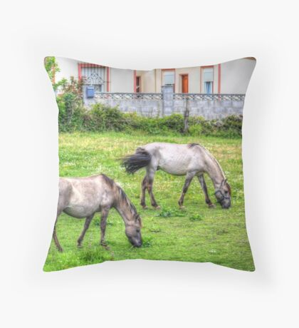 Feeding in hdr Throw Pillow