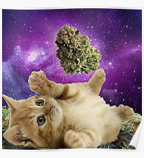 Space kitten  Poster