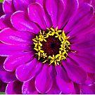 Flowers in flower by Yana Art