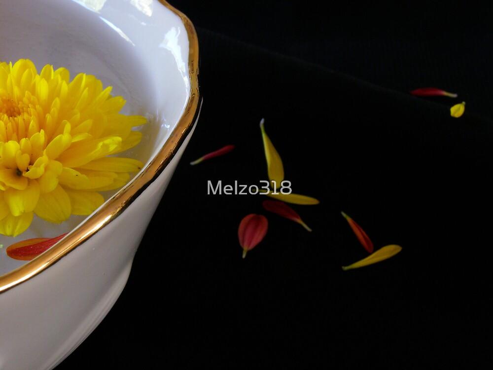 He Loves Me, He Loves Me Not... by Melzo318