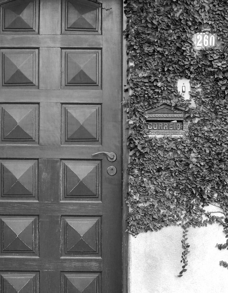 Doors of Brazil by Calvin Hanson