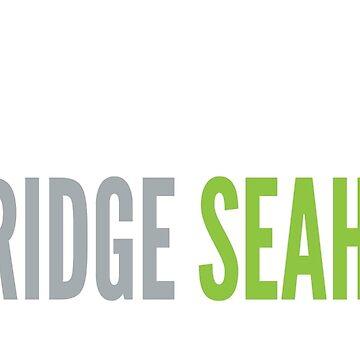 Lake Ridge Seahawks   Laces by GraphicSnob