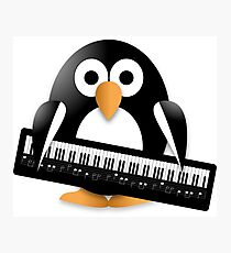 Penguin with piano keyboard Photographic Print