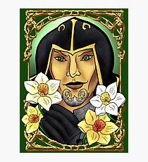 Narcissus poeticus. Daffodil. Ondolemar. Elf Photographic Print