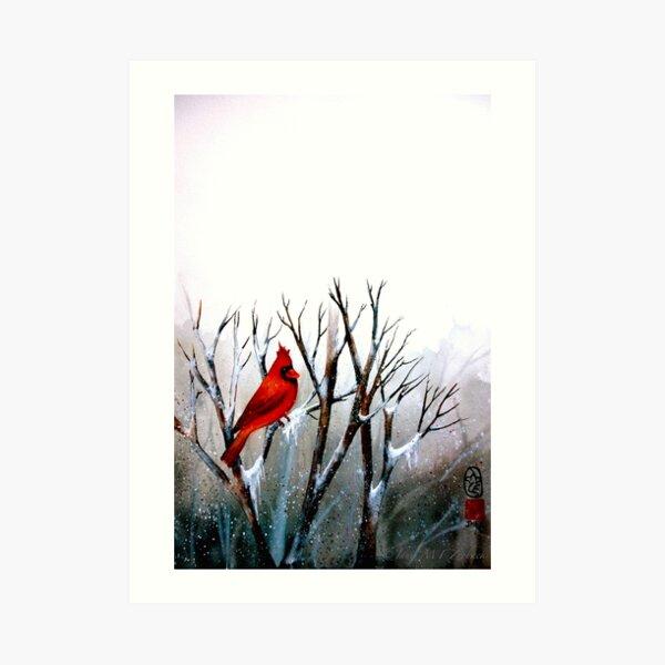 Cardinal.. Art Print